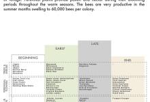 Honeybee Planting Schedule